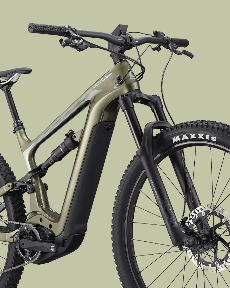 mountain-bike elettriche